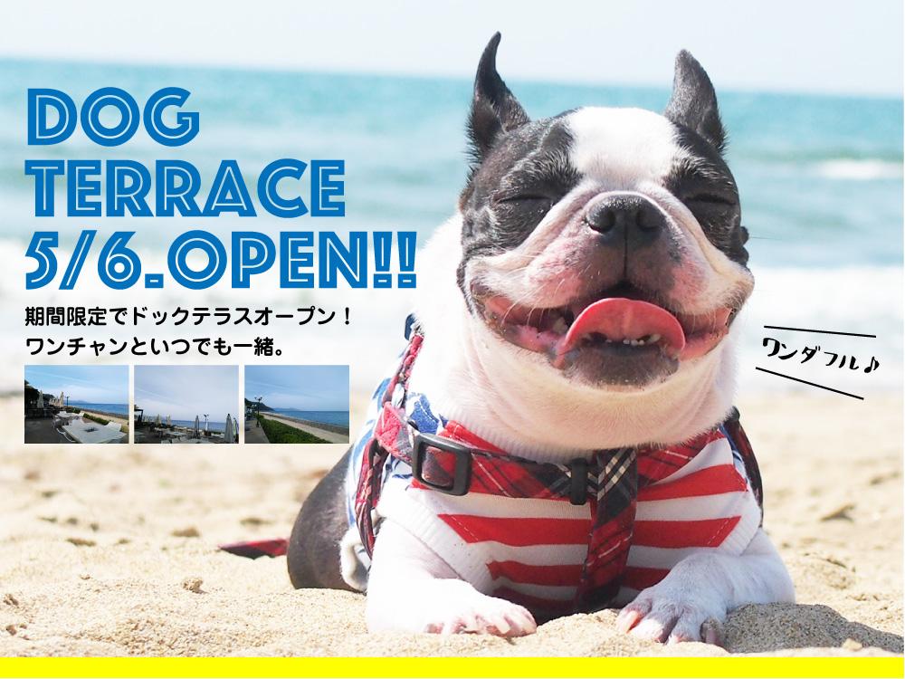 【期間限定】ドッグテラスOPEN☆5月6日START!